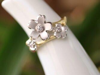 ピンクダイヤモンド桜の指輪の画像
