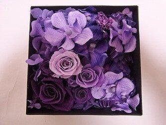 プリザーブドフラワーのボックスアレンジ「紫蘭」の画像