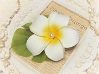 フラガール 2wayクリップ プルメリア☆*:ホワイトの画像
