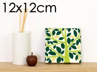 12x12cmちいさなファブリックパネル【大きな木のファブリックパネル】グリーンの画像