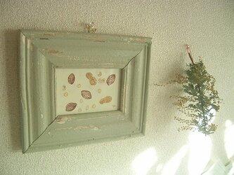 木の実の画像