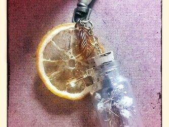 ドライレモンのバックチャームの画像