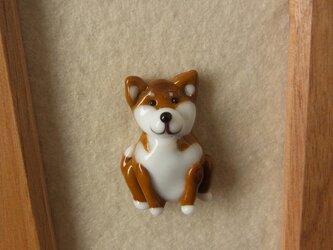タックピン・柴犬 フォトフレーム付きの画像