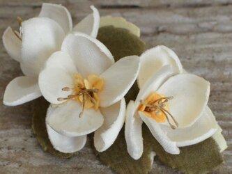 *染の草花*みかん花のブローチの画像