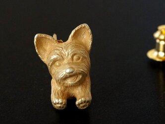 ヨークシャテリアの犬ピンブローチ 真鍮の画像