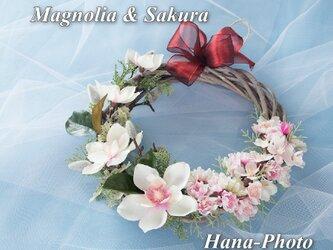 春爛漫!マグノリアと桜のリース  リース台:25㎝  (124)の画像
