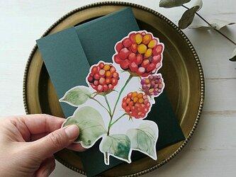 キイチゴのメッセージカードの画像