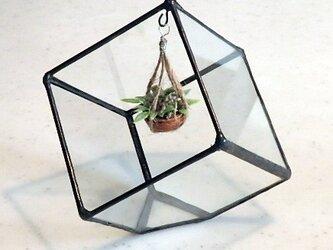 ステンドグラス キュービックテラリウム 1の画像