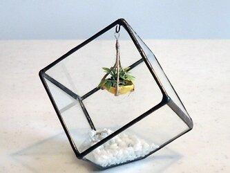 ステンドグラス キュービックテラリウム 2の画像