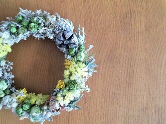 <お値下げ>春待ちリース ミニバラ・コチア・木の実 いっぱい詰めましたの画像