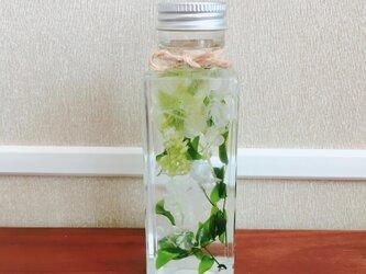 【ハーバリウム】プレゼント、インテリアにご利用ください♪【小瓶・グリーン基調】の画像