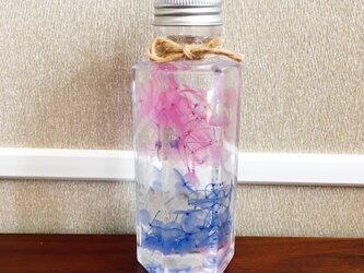 【ハーバリウム】プレゼント、インテリアにご利用ください♪【青・ピンク】の画像