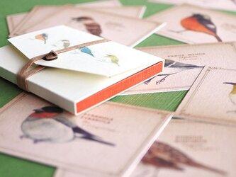 ちょっと大きめ*野鳥たちのメッセージカード(専用ケース付き)の画像