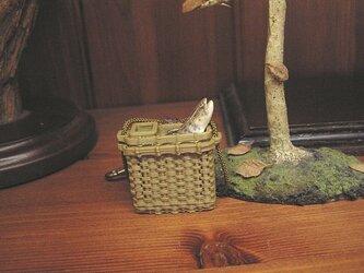 角魚籠&ヤマメの画像