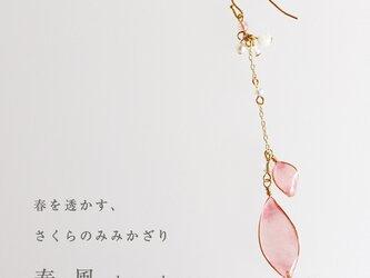 【春季限定】さくらのみみかざり 春風【片耳販売】の画像