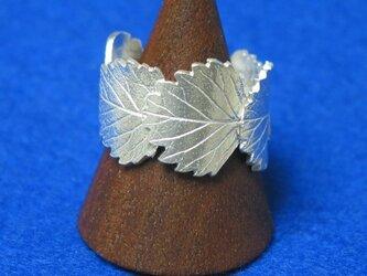 五小葉のリングの画像
