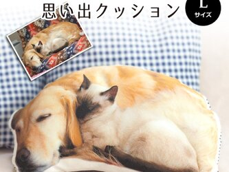 思い出ペットクッション(Lサイズ 綿100%厚手生地 ) うちの子 オーダーメイド ぬいぐるみ 犬 猫 うさぎ ペットメモリアルの画像