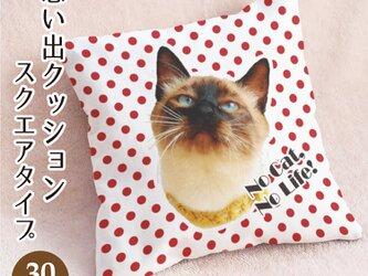 思い出ペットクッション スクエアタイプ ドット柄(正方形30cm角 厚手生地) オーダーメイド 犬 猫 うさぎ ペットメモリアルの画像