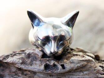 眠る猫のリングの画像