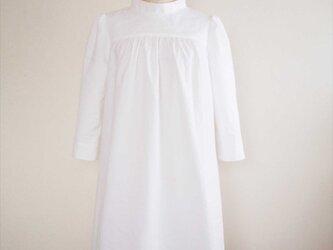 Amaryllis -white dress-の画像
