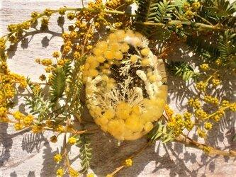 海のミモザブローチの画像