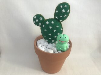 けろちゃん 植物のある暮らし サボテン①の画像