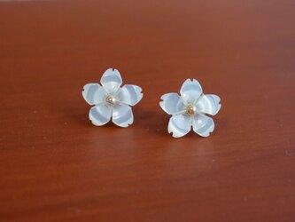 【14kgf】ひとひら桜のスタッドピアス/ホワイトの画像