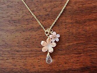 14kgf ピンクシェル桜のネックレスの画像