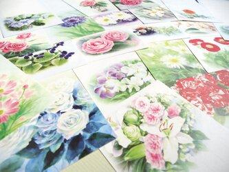 24枚、花の水彩画一筆箋 24種柄違いの画像
