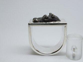 Hippopotamus Ringの画像