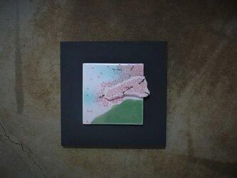 桜 4 (陶板)の画像