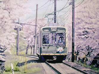 桜並木を通っての画像