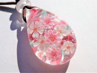 《八重桜と大島桜》 ペンダント ガラス とんぼ玉 花 春 桜の画像