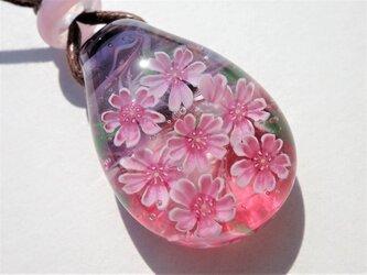 《宵桜》 ペンダント ガラス とんぼ玉 桜  春の画像