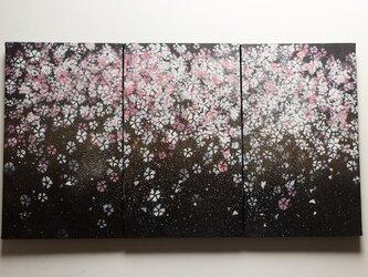 Sakura / 夜桜の3連キャンバス作品の画像