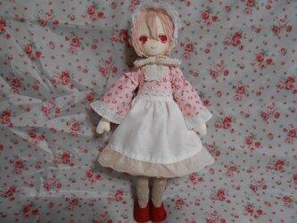雪うさぎ お人形シリーズ【せらちゃん】※オーダーのご案内有りの画像