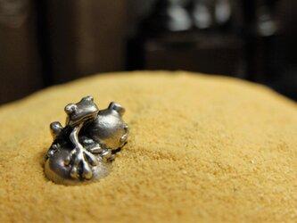 瓢箪蛙の画像
