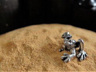 帽子蛙の画像