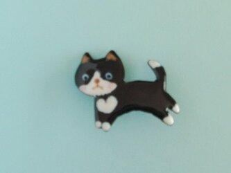 七宝 黒猫ハートを胸にの画像
