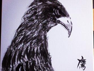 空を支配する鷹の画像