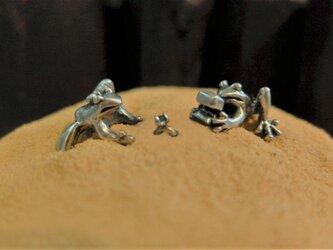 告白蛙の画像