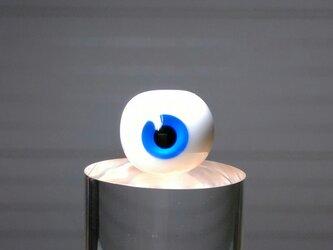 目玉/青の画像