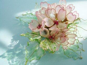 桜の囁き(クリップ付コサージュ)の画像