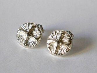 cross button pierce(sv)の画像