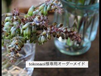 tokonaoiさま 専用オーダーメイドの画像