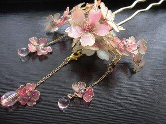 桜の小枝(かんざし)の画像