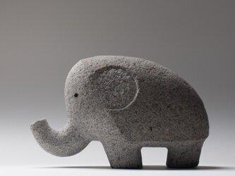 ゾウ13 Elephant 13の画像
