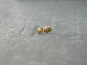 小さな貝殻のピアス 真鍮の画像