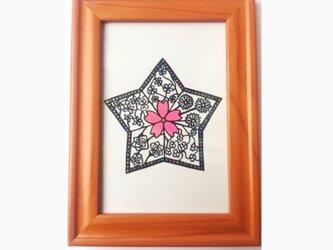 カラフルな星形のお花畑の画像