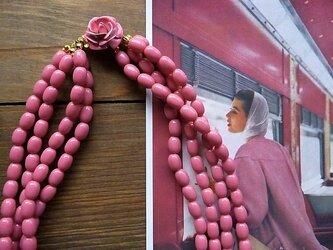Pink Roseの画像